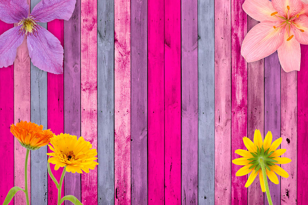 Pink Wood Background with Flowers